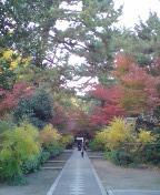 ホーボー日記(2008.11.27)