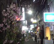 ホーボー日記(2009.3.19)