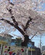 ホーボー日記(2009.3.30)